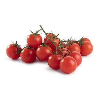 Biolissimo feine Cherrystrauchtomate