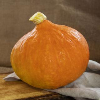 Hokkaido orange, eigener Anbau
